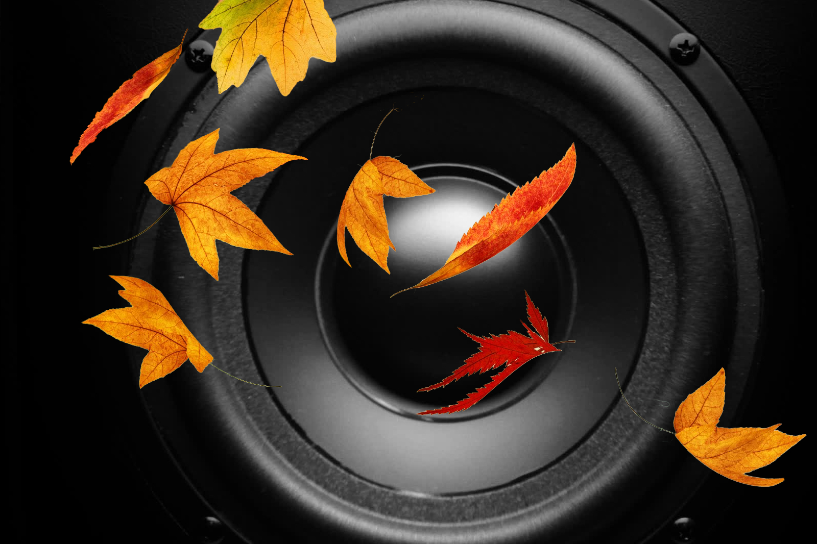 automne-v1